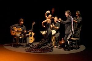 flamencooo